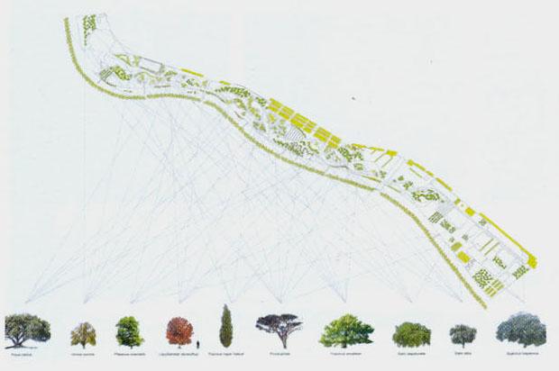 Propuesta ganadora img03. fuente //Arquitecturacoam n343
