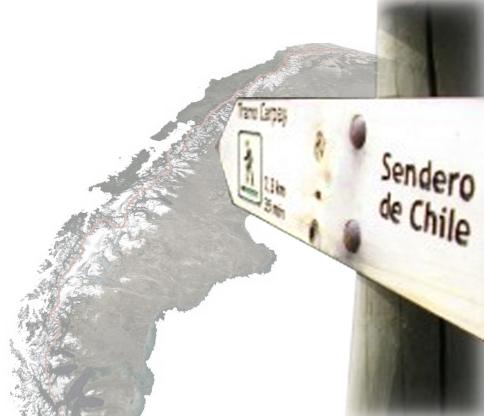 SENDERODECHILE3