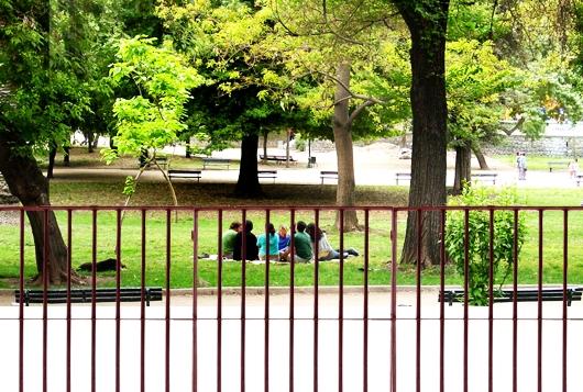 1408762959_parque_forestal.jpg