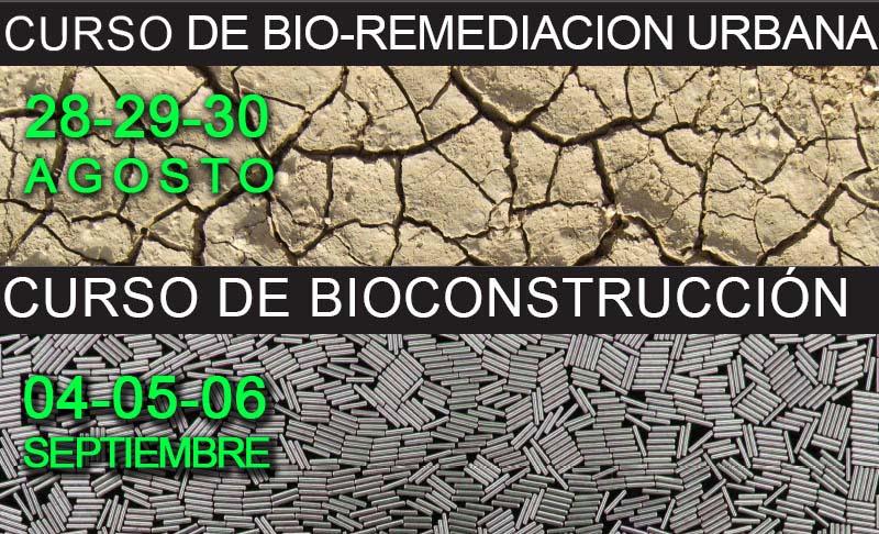 bio-remedacion-urbana