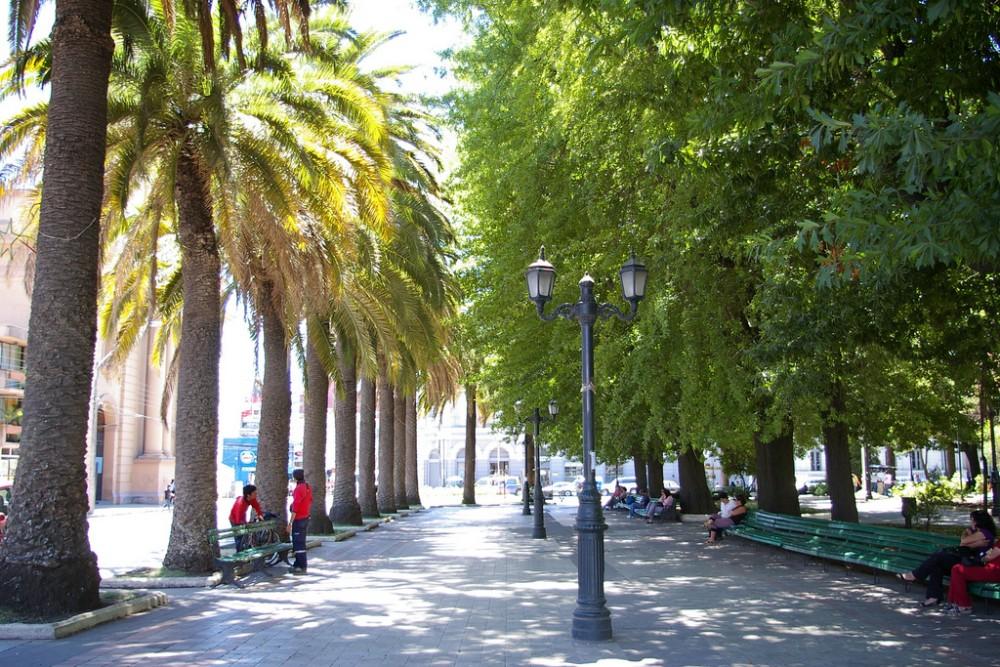 Curicó, Chile (cc) by Jessie Reeder