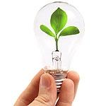 Llegan los certificados de origen verde a la electricidad