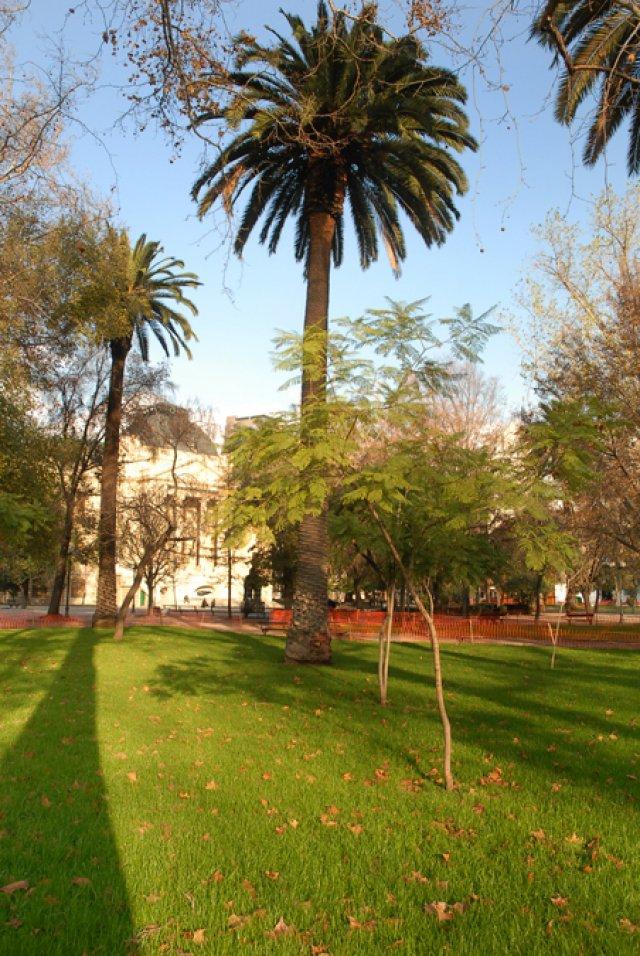 Chile_Santiago_PARQUE_FORESTAL_2