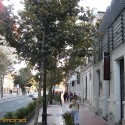 Barrio Bellavista _ 9