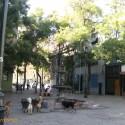 Colectivo Barrio Esmeralda _ 3