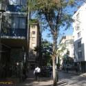 Colectivo Barrio Esmeralda _ 4
