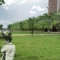 © San Martín y Pascal, Proyecto Sitio Vivo, segundo lugar. Área de césped
