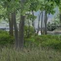 © San Martín y Pascal, Proyecto Sitio Vivo, segundo lugar. Bosque nativo