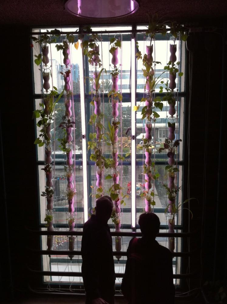 © Windowfarms
