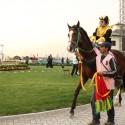 Jinete y caballo presentados en el Óvalo antes de la carrera. © Plataforma Urbana.