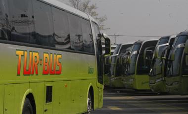 Buses Tur Bus
