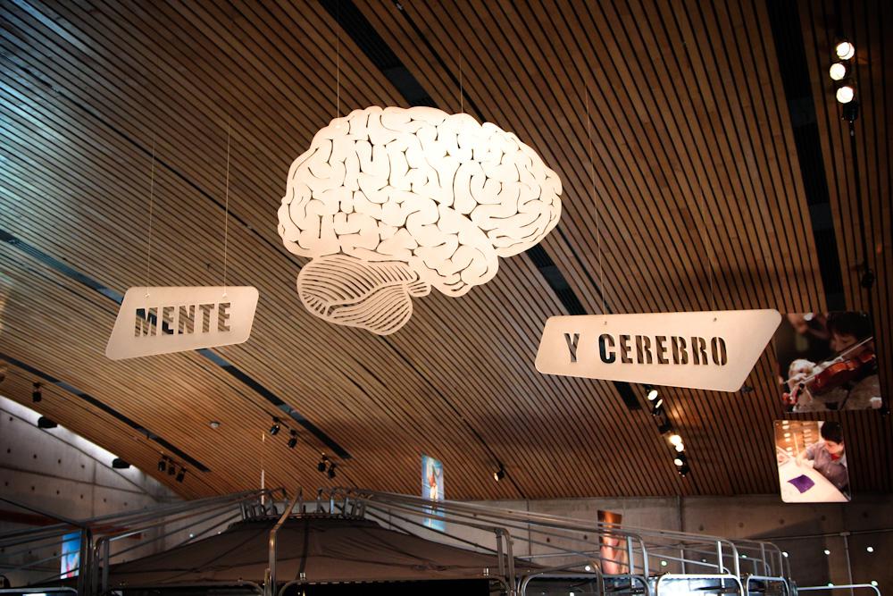 ¿Cómo funciona el cerebro? Segundo piso. © Plataforma Urbana.