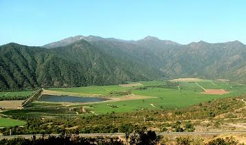 Valle Tapihue