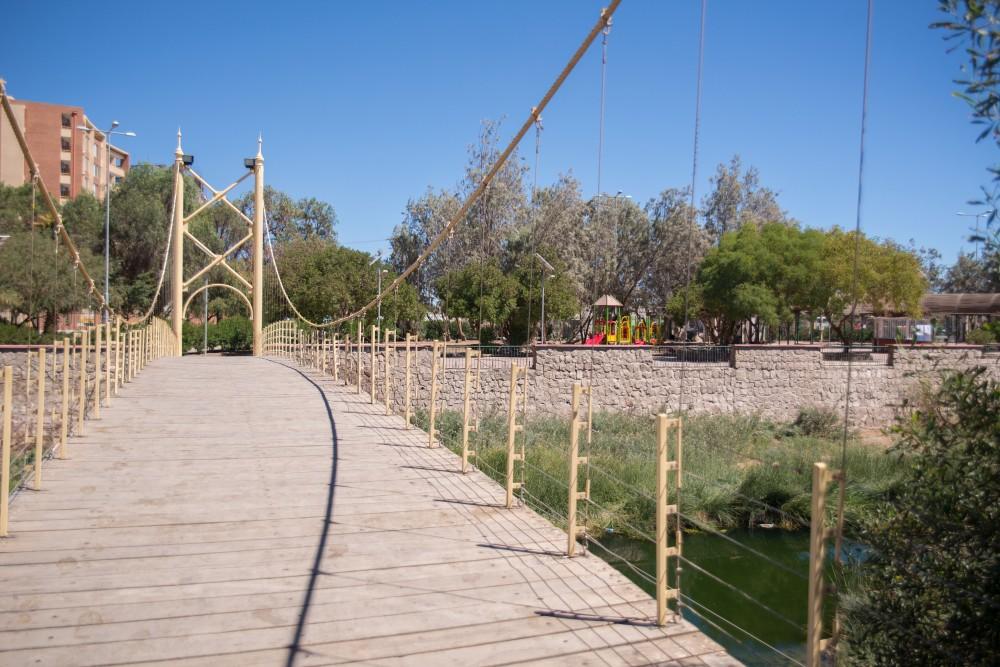 Parque El Loa 6
