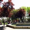 Concepción tradicion y modernidad