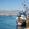 Puerto Coquimbo 1