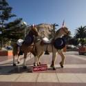 Plaza Vicuna Mackenna 1