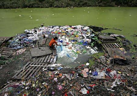 Vía: environment911.org