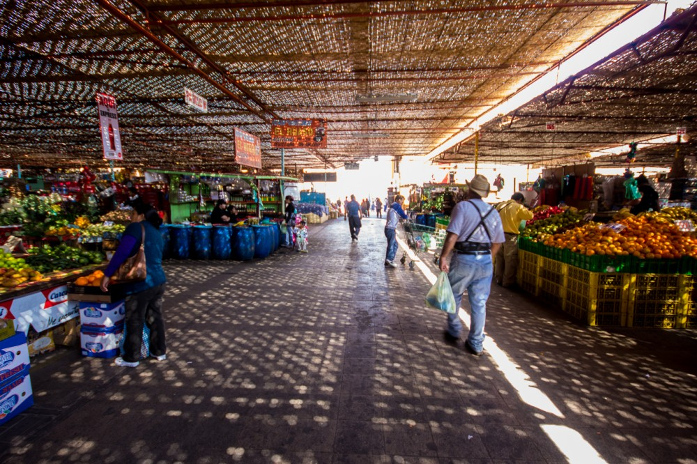 Terminal Agropecuario 24