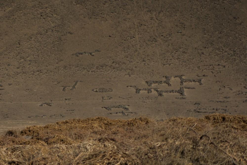 Geoglifos visto desde el camino Las Maitas