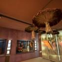 Museo Arq. San Miguel de Azapa 6