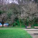 Parque Ecuador. © Armando Torrealba para Plataforma Urbana