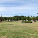 Parque Chuyaca Osorno 9