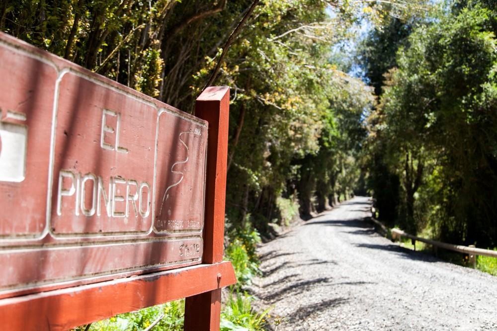 Parque Nacional Puyehue 5