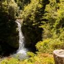 Parque Nacional Puyehue 12