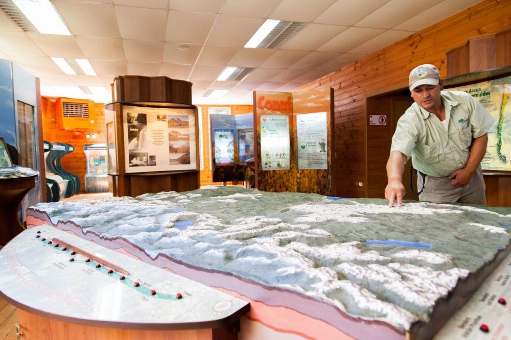 Parque Nacional Puyehue 13