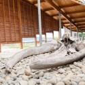 Museo Regional de Ancud Esqueleto ballena