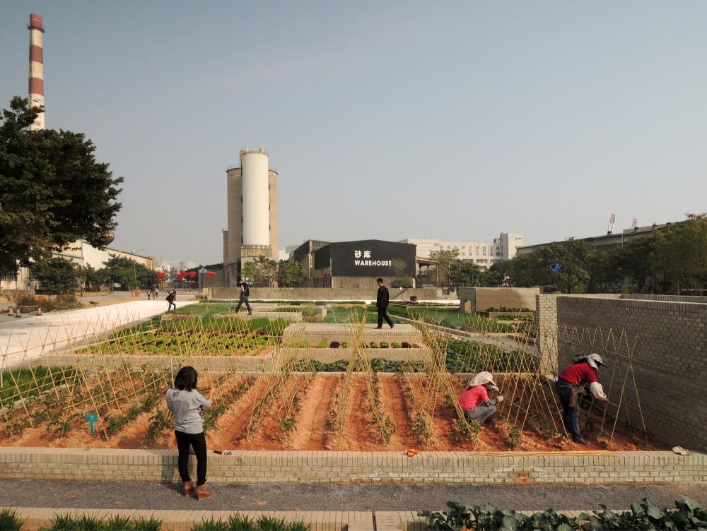 Value Farm 1