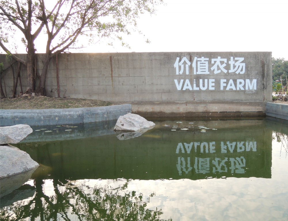 Value Farm 16