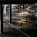 Cortesía Proyecto Colectivo, vía Plataforma Arquitectura.