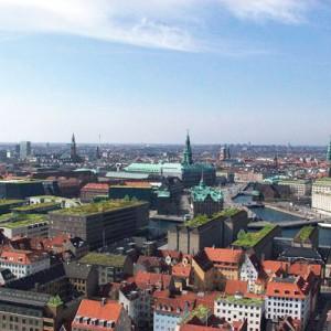 Techos Verdes Copenhague