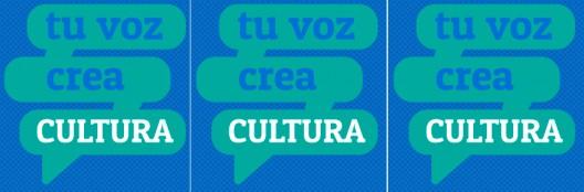 consulta CNCA