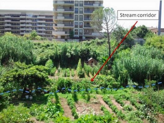 Jardín comunitario en un área residencial. Imágen Giuseppe Pulighe, 2014.