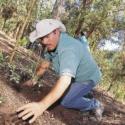 reforestacion ladera sur san cristobal
