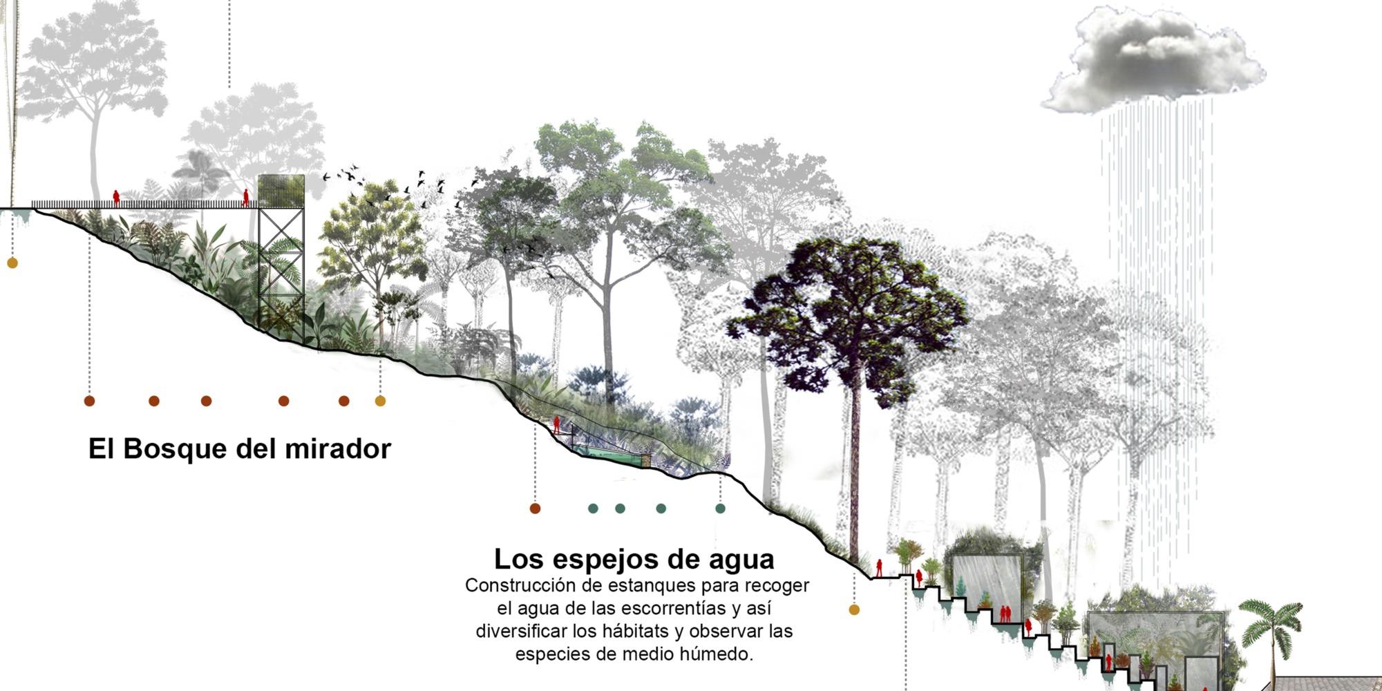 16 Asom Seccion Detalle Paisajismo Plataforma Urbana