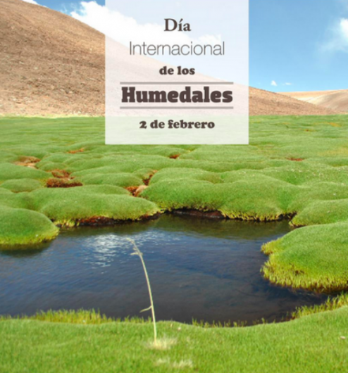 Fuente imagen: Ministerio de Medio Ambiente.