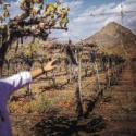 emergencia agricola comunas chile