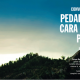 pedaleaparquemet