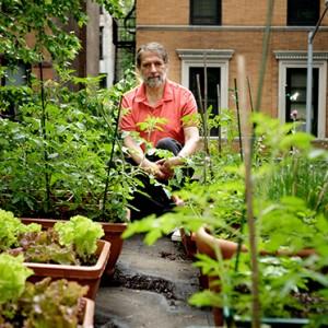 © Burros, Marian. Urban Farming, a bit closer to the sun. The New York Times [En Línea]. 16 de junio de 2009.