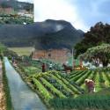 2 agrocultivos en sur