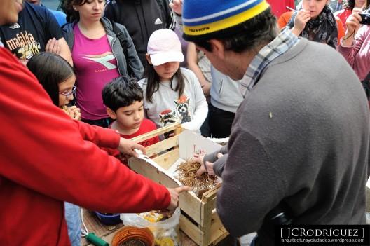 Taller de inducción para huertos urbanos, Santiago 2014