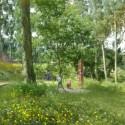 parque y sendero B