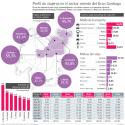 perfil viajeros sector oriente gran santiago encuesta origen destino 2012