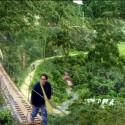 puente colgante con canopy