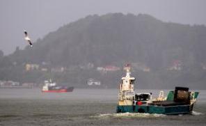barcaza niebla corral