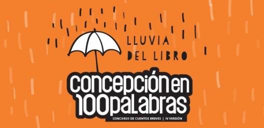 afiche lanzamiento concepcion 100 palabras 2015